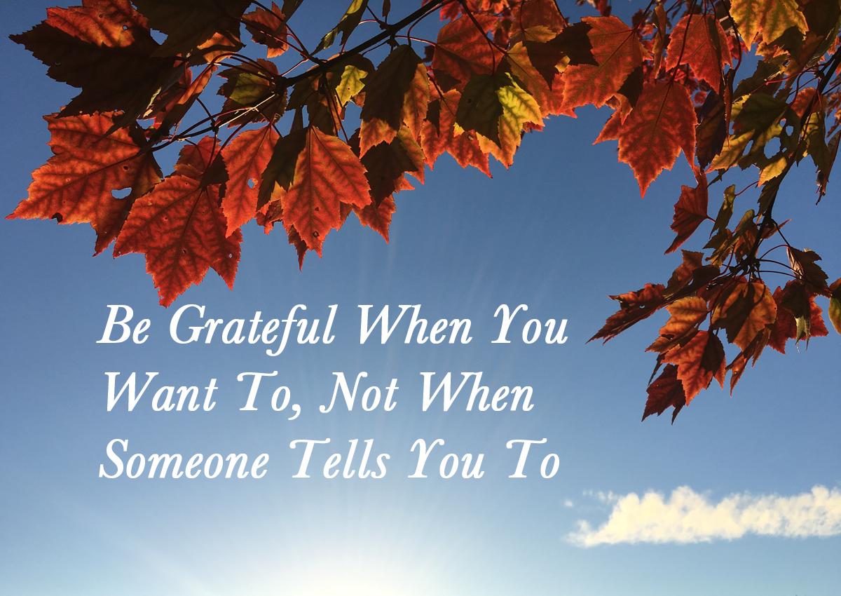 11-23-15 Gratitude